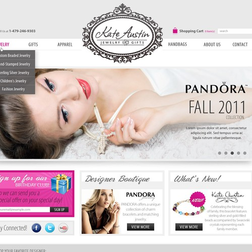 Help Kate Austin Jewelry and Gifts with a new website design
