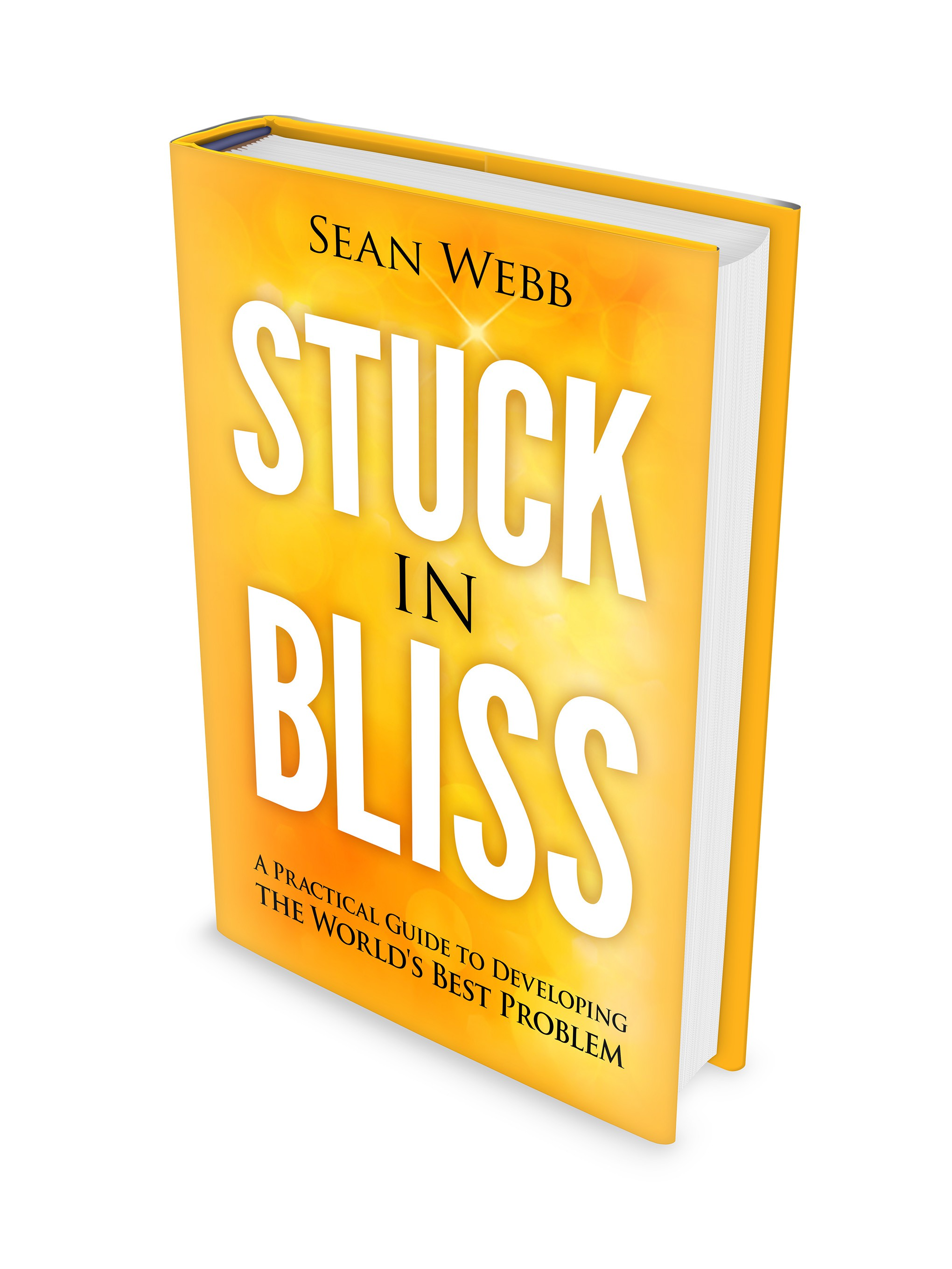 BOOK COVER (& maybe more): Stuck In Bliss