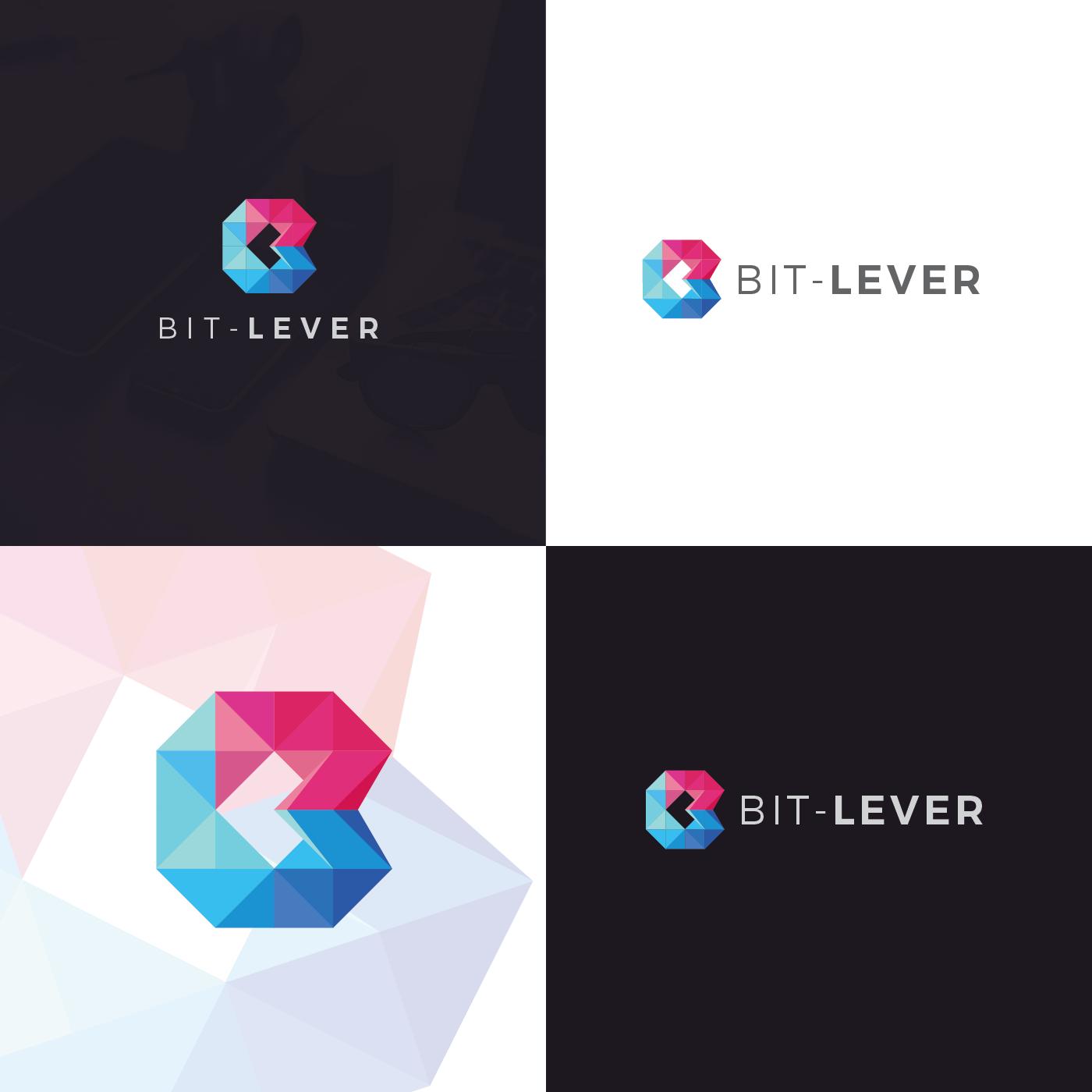 Come design our Software company logo!