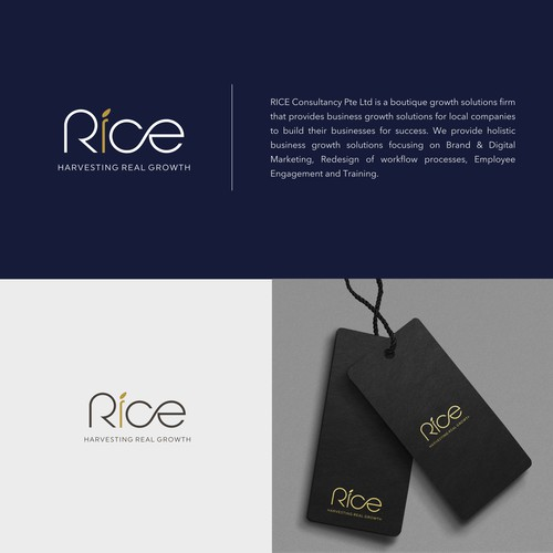 Design an Inspiring Logo for RICE Consultancy