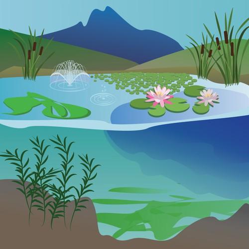 illustration for aquatic control company