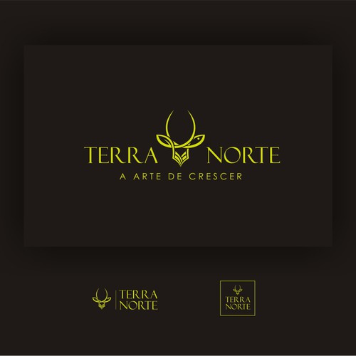 Logo concept for terranorte