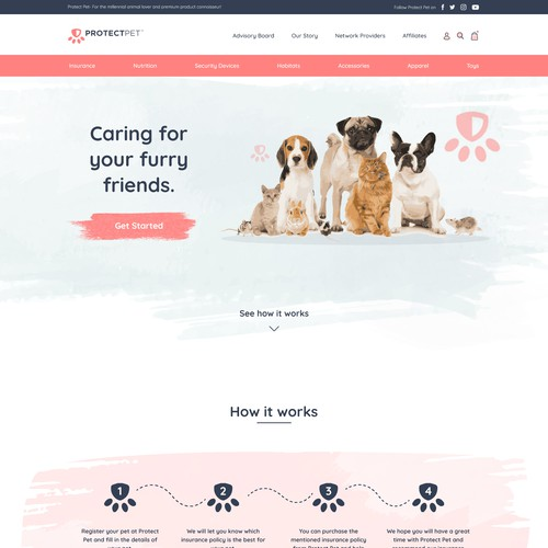 Web Design Contest Entry