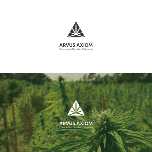 Logo for a cannabis management company