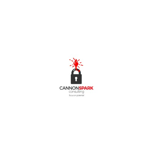 Cannon spark consulting logo.