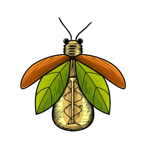 Hand-drawn logo for a firefly with lightbulb body