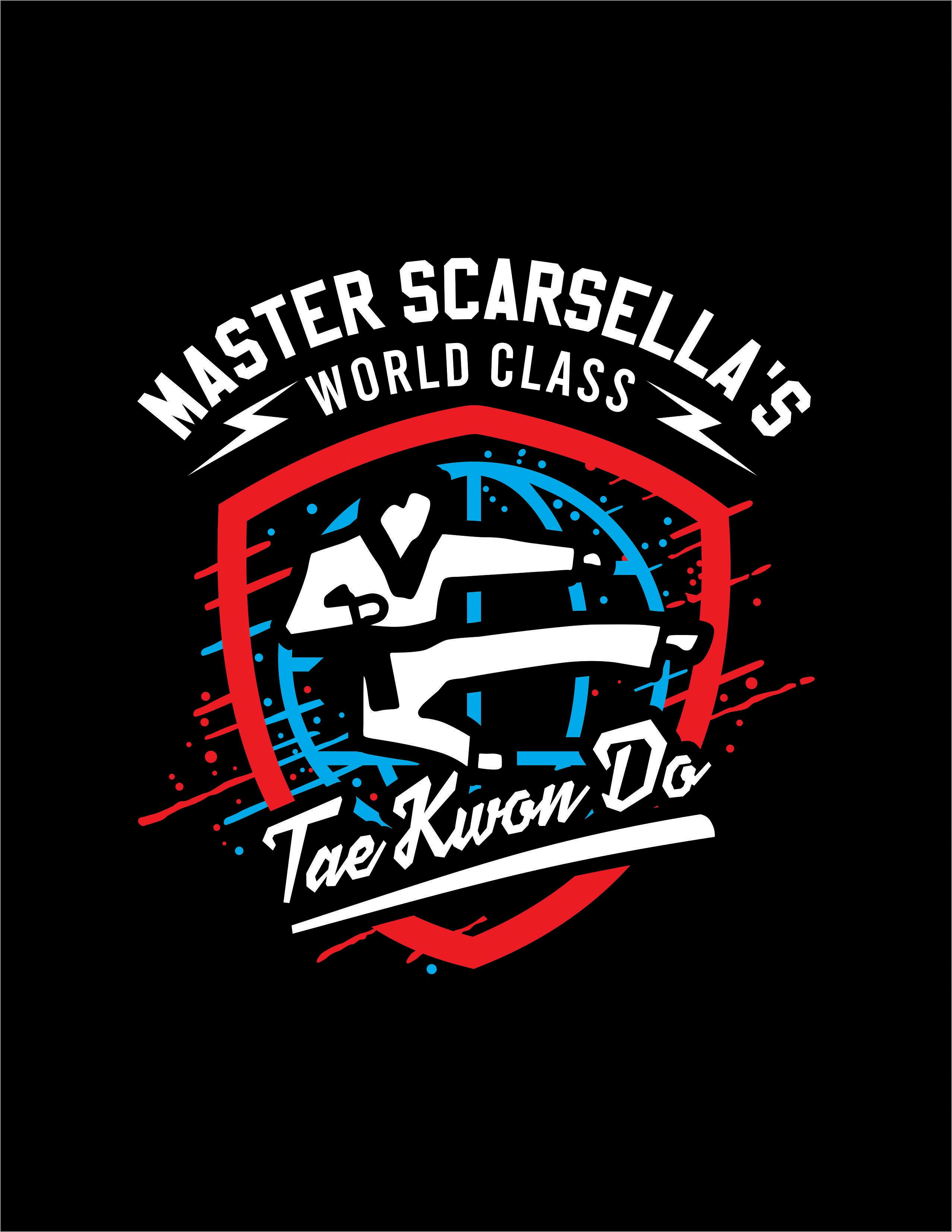Taekwondo School looking for a fun t-shirt for all ages!