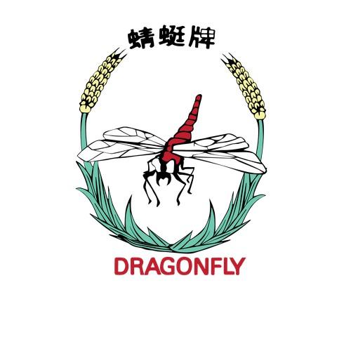 Dragonfly logo makeunder