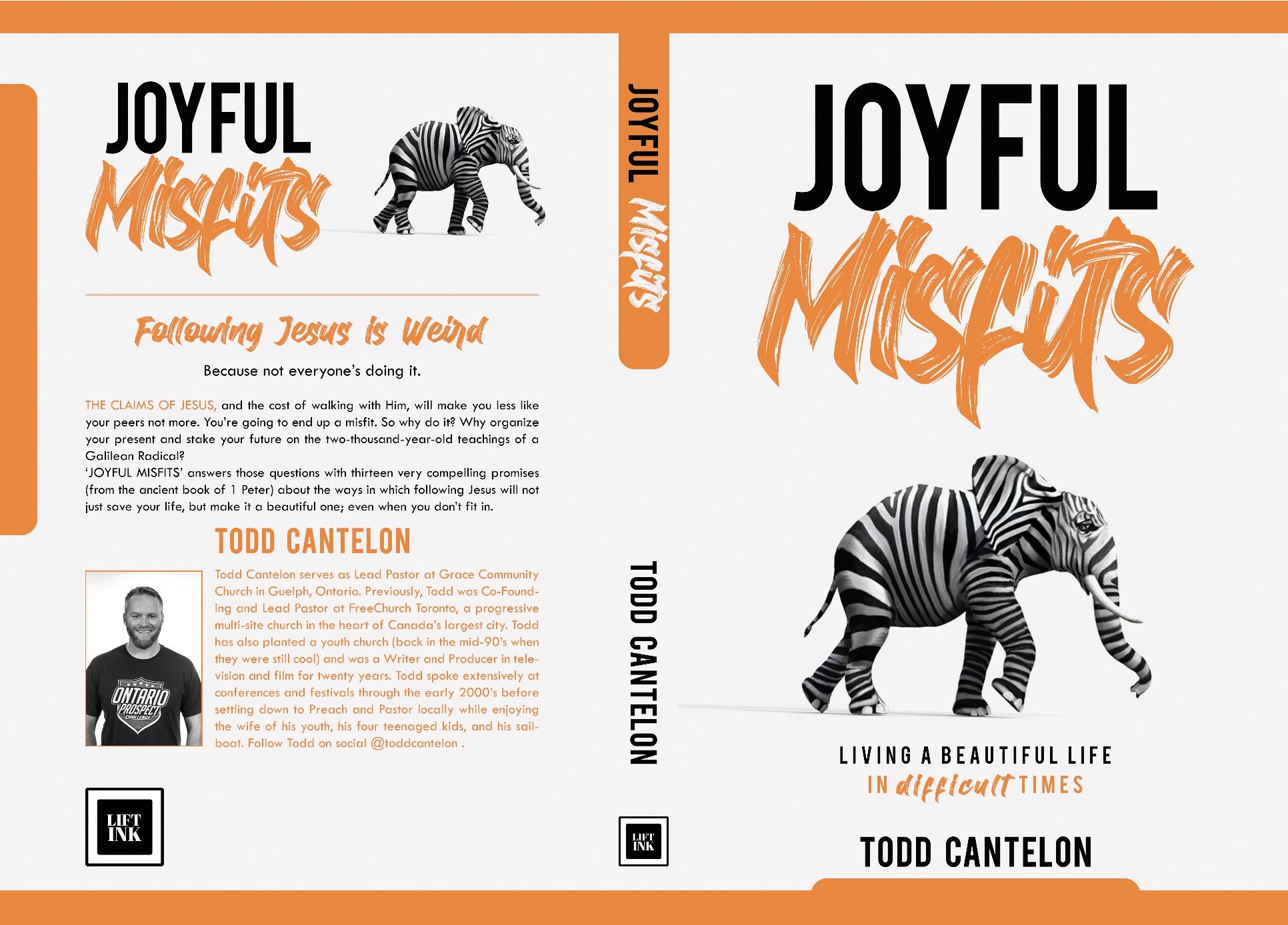 Design a book cover for a faith-based book that SPARKS JOY!