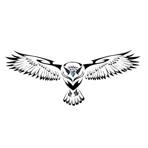 Tatto`s hawk illustration