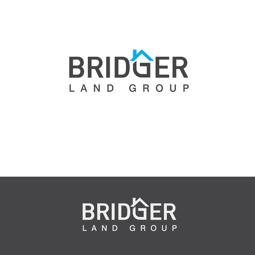 Create a sleek, inspiring brand identity for an emerging luxury real estate developer!
