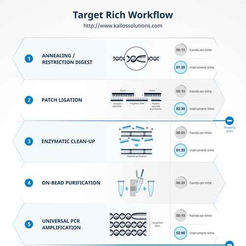 Workflow Infographic for Kailos