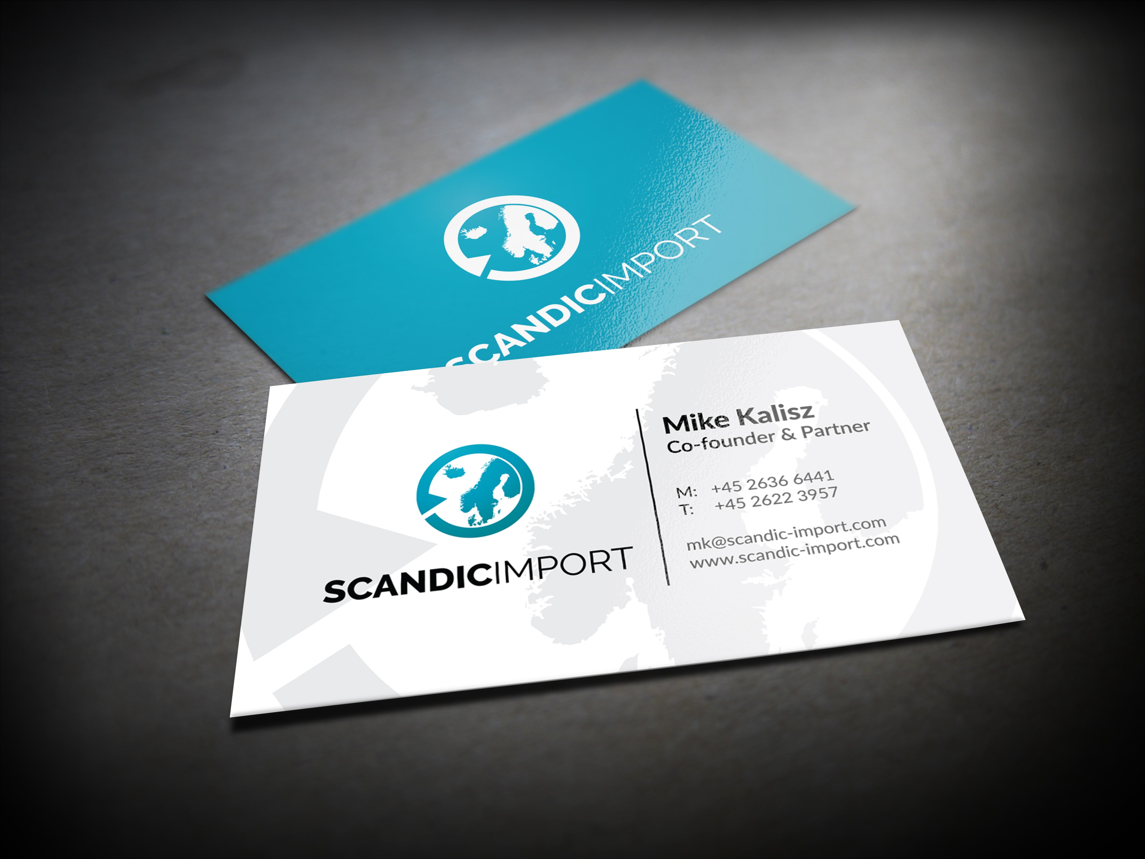 Logo and Business Card for Scandic Import