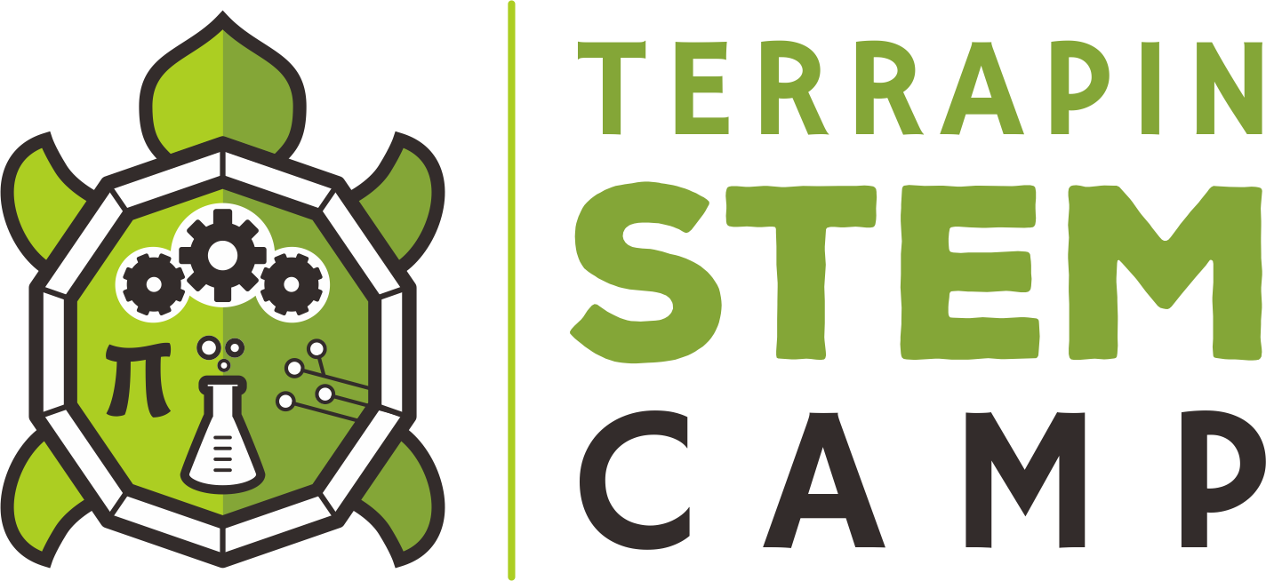 Create a capturing terrapin illustration for Terrapin STEM Camp