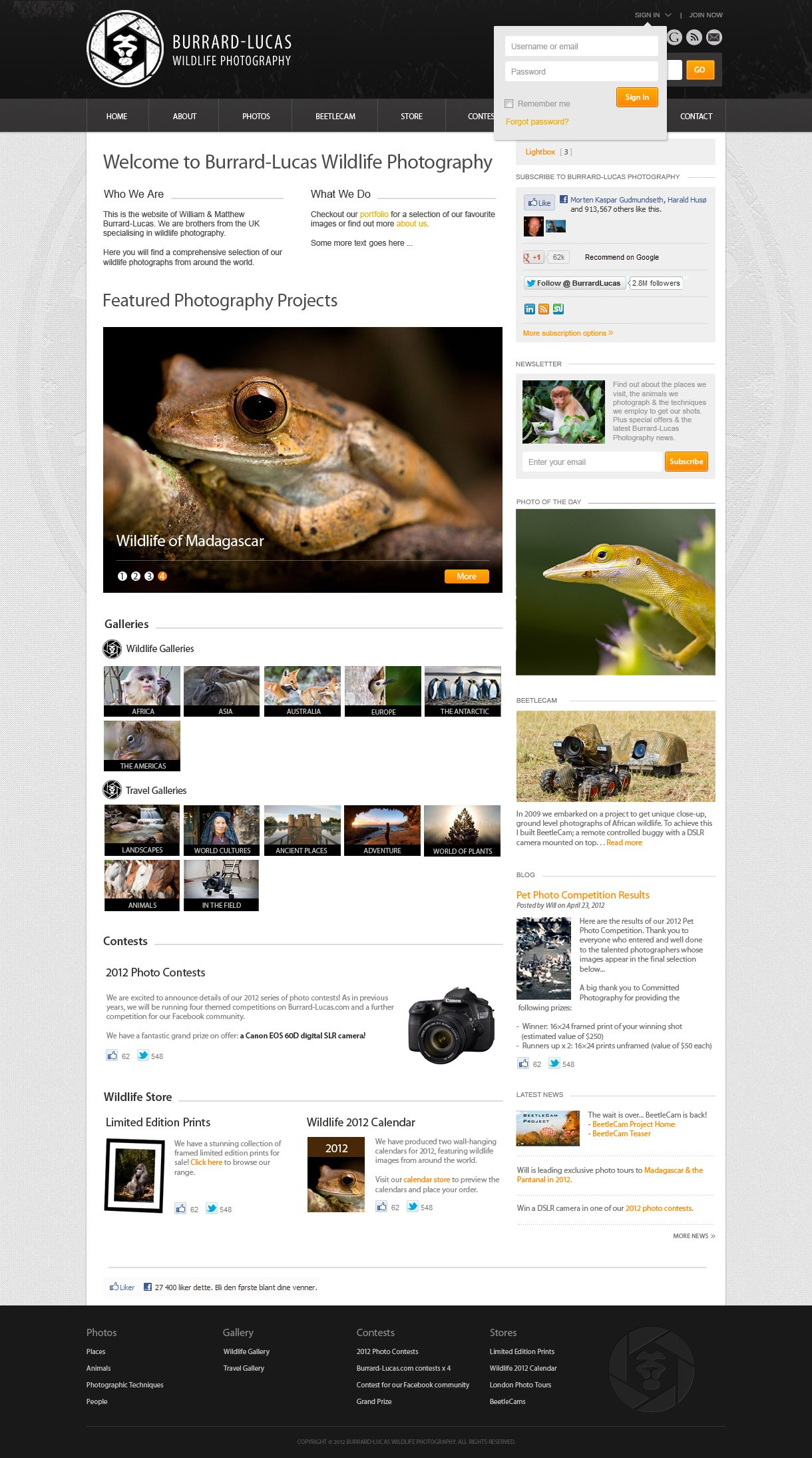 Design a Professional & Cool Photography Website