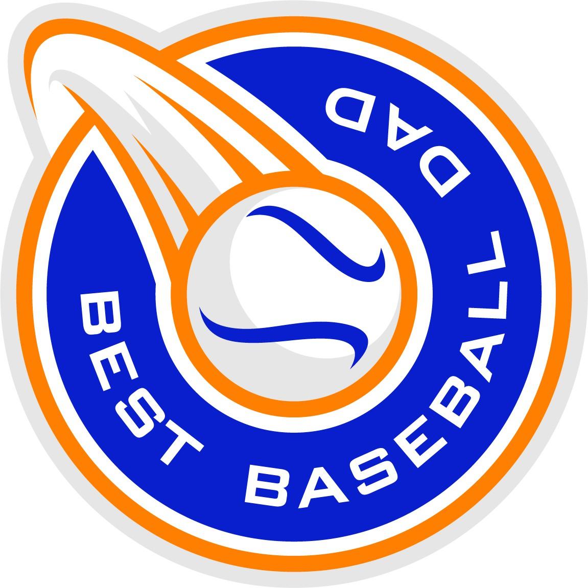 Best Baseball Dad Logo Design