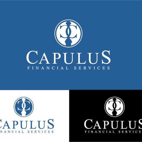 Logo concept for financial services company.