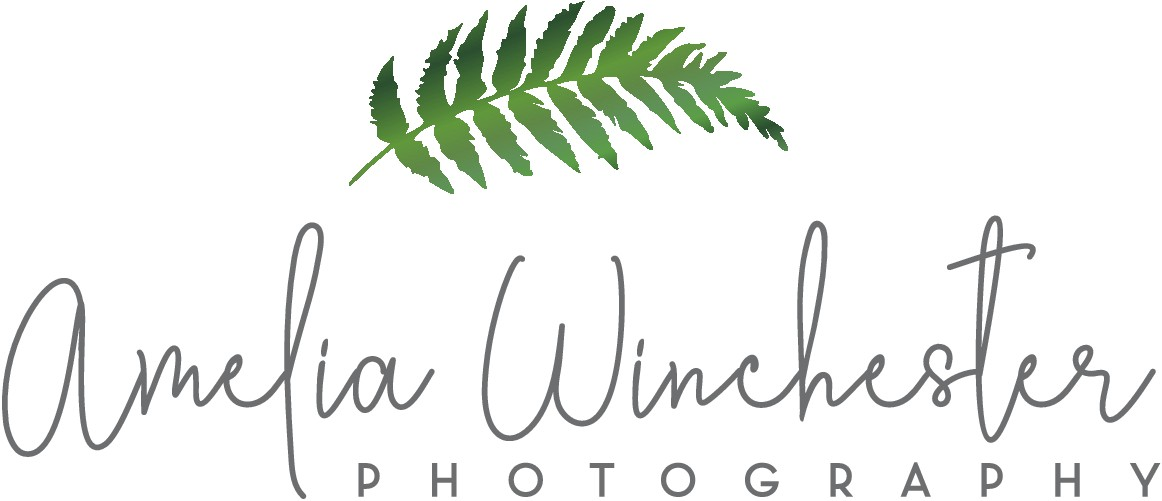 Create a folksy & organic logo for my photography business