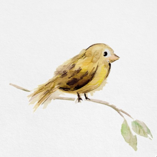 Watercolor Sparrow