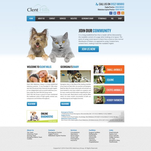 Design the best Vets website homepage on the planet!