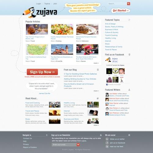 Website design for Zujava