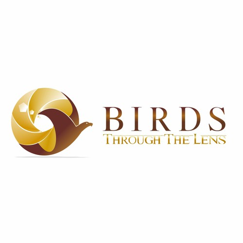 logo for Birds Through The Lens