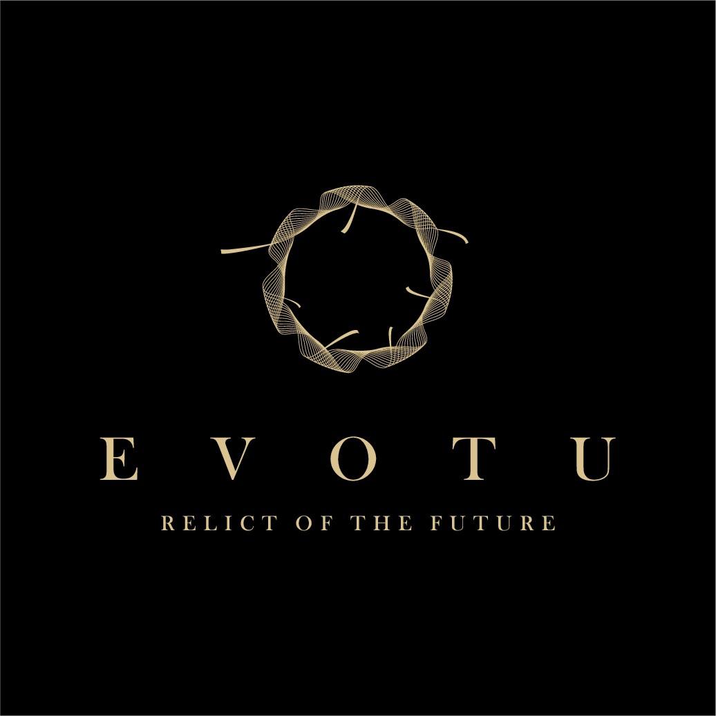 Innovative Light Logo wanted EVO.TU or EVOTU!
