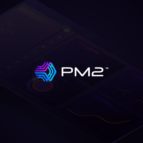 Pm2 Logo