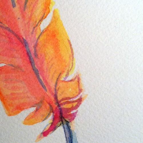 Tattoo Phoenix feather