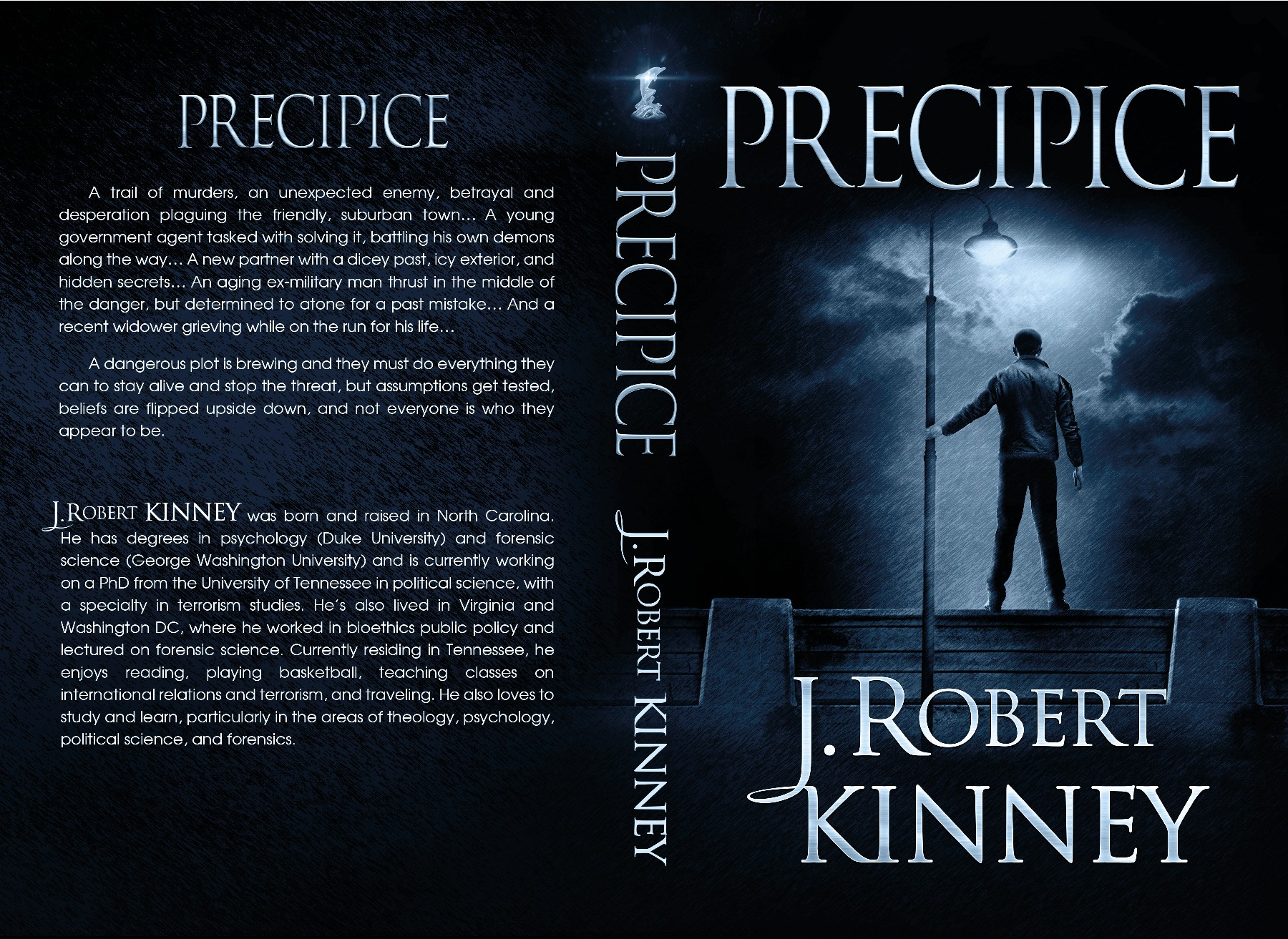 Precipice - Book Cover for a Mystery/Suspense novel
