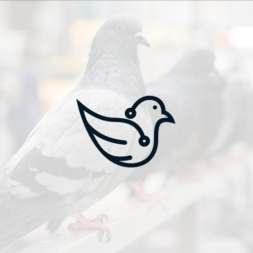 Pigeon logo for IoT Tech Startup!