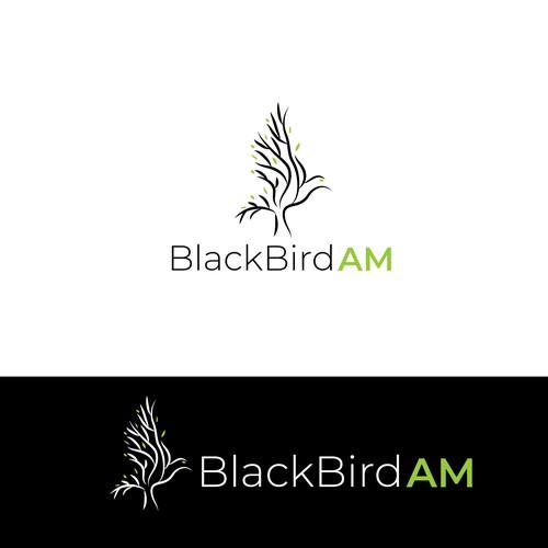black bird AM