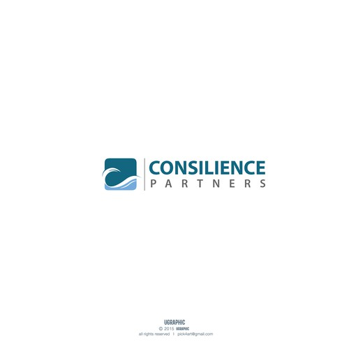 Consilience Partners