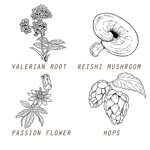 Clean graphics / sketches for various different Herbs