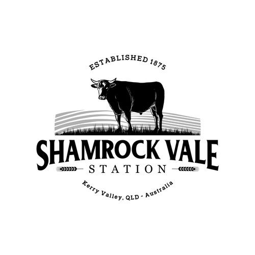 Logo design for Shamrock Vale Station QLD - Australia
