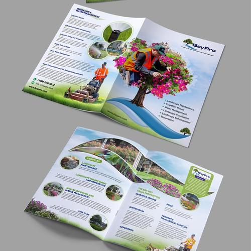 brochure using existing website data