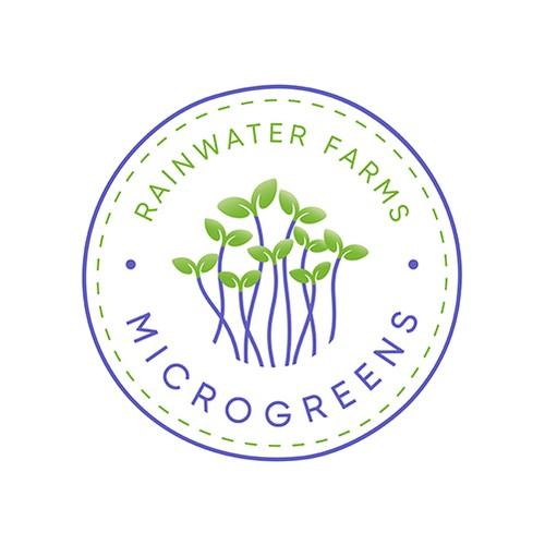 Rainwater Farms Microgreens