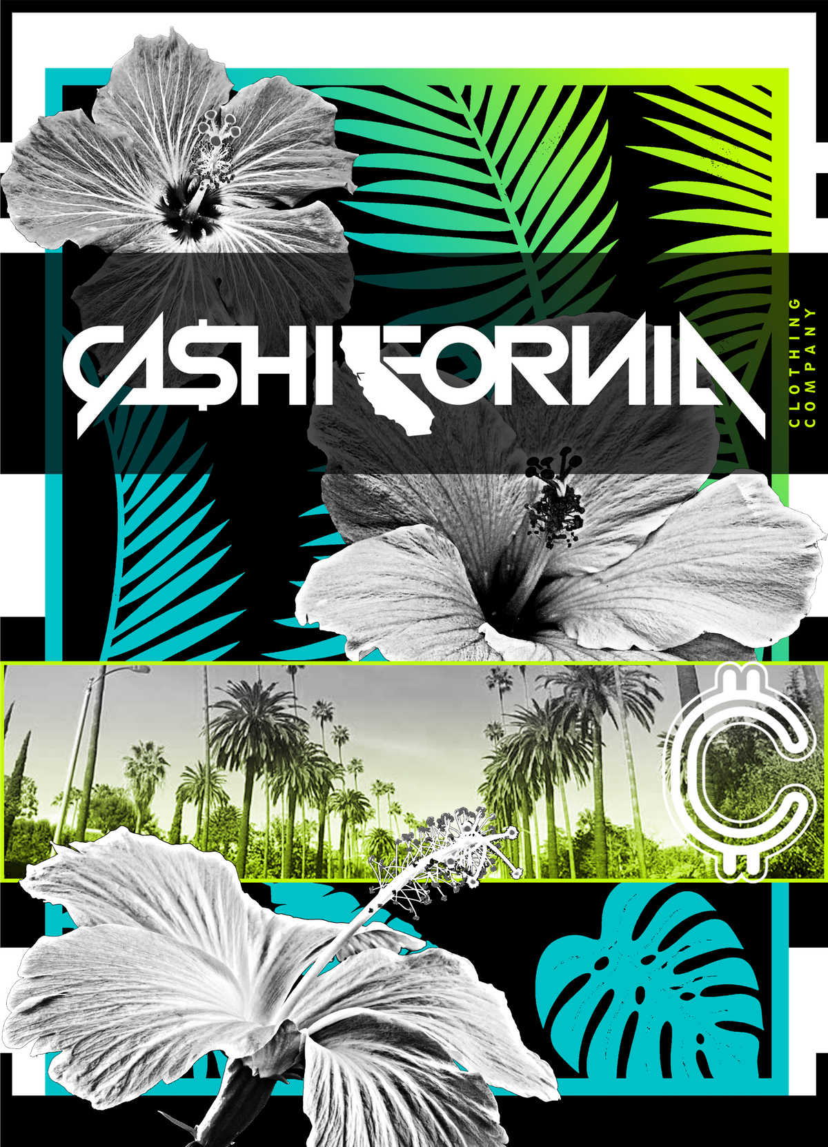 Cashifornia t-shirt design