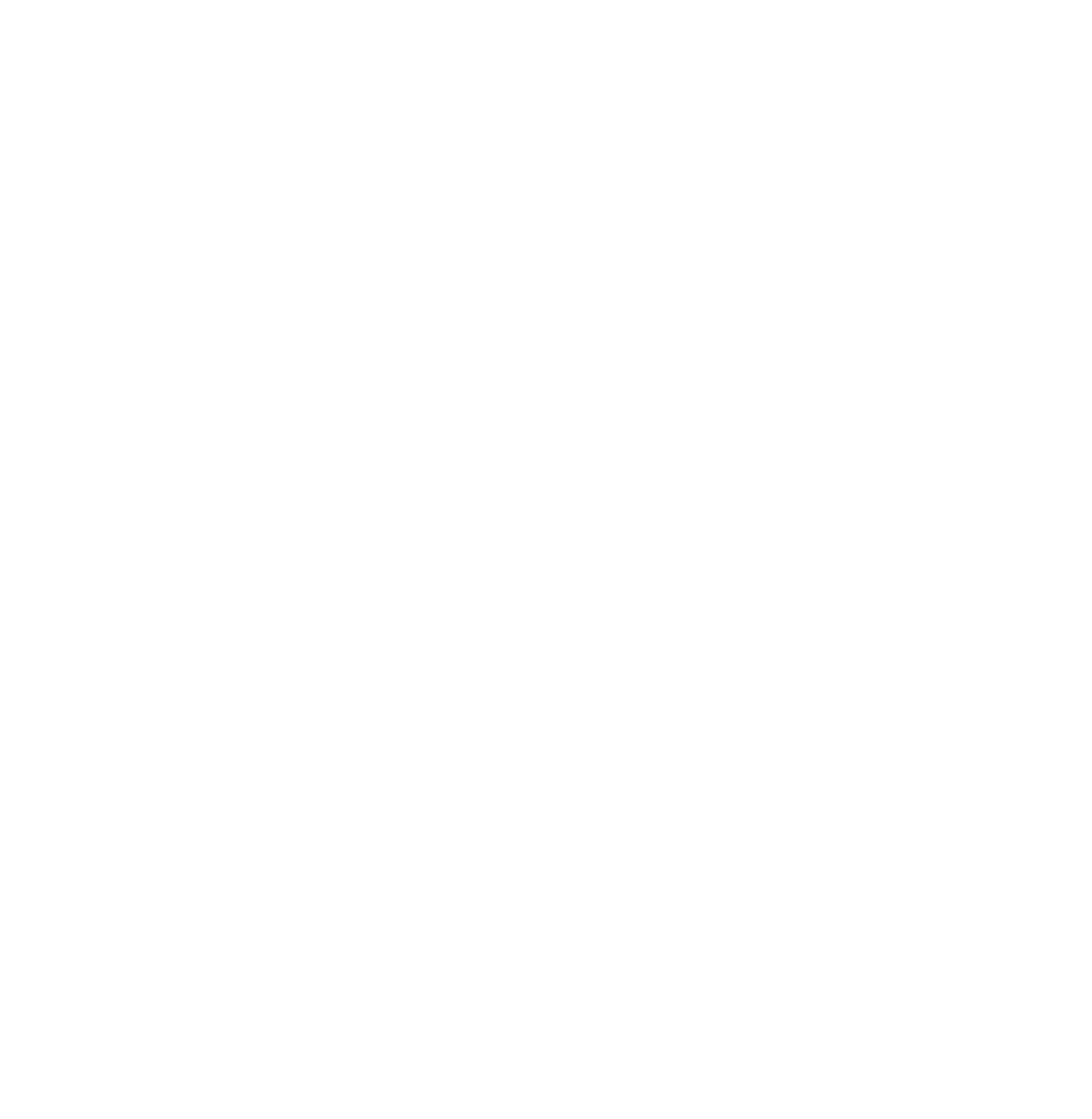 Single color or two color version of current logo