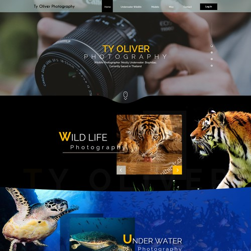 Homepage design for Photographer