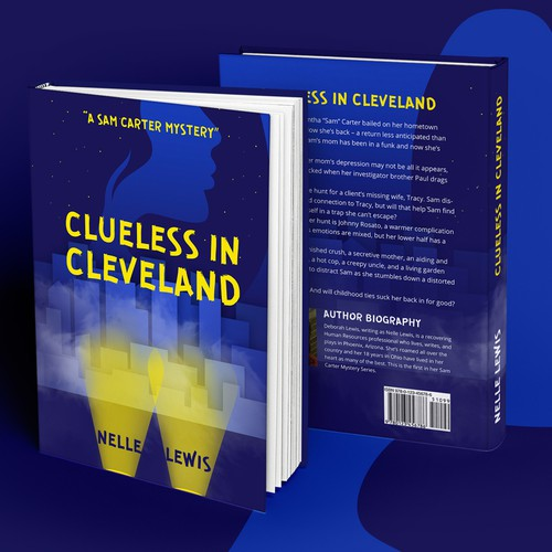 New Mystery Series Book Cover