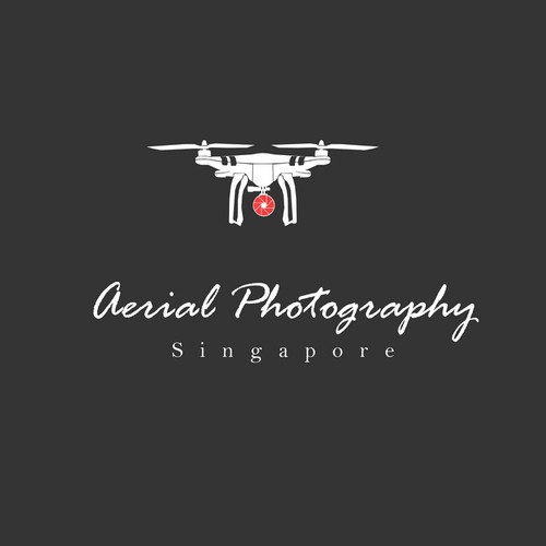 Create a stunning logo for an aerial photography business