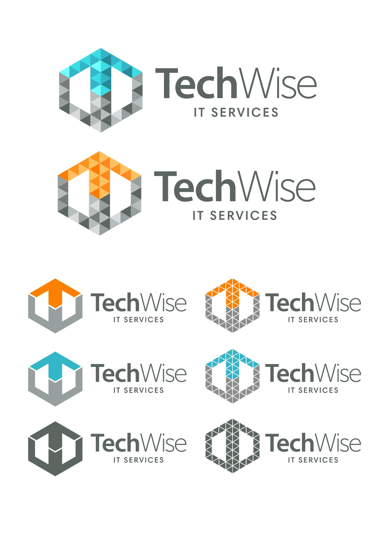 Mature IT Company searching for a new logo.