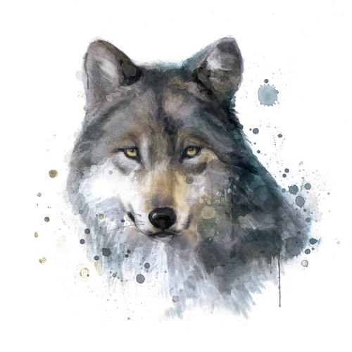 Wolf, illustration for product design