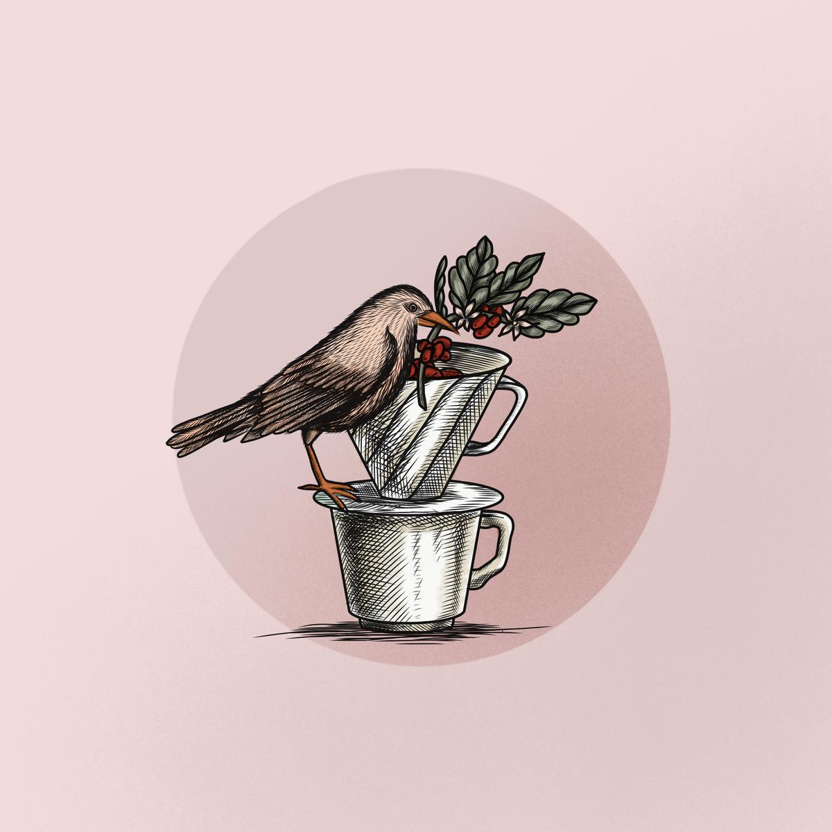 Harvests Coffee illustrations