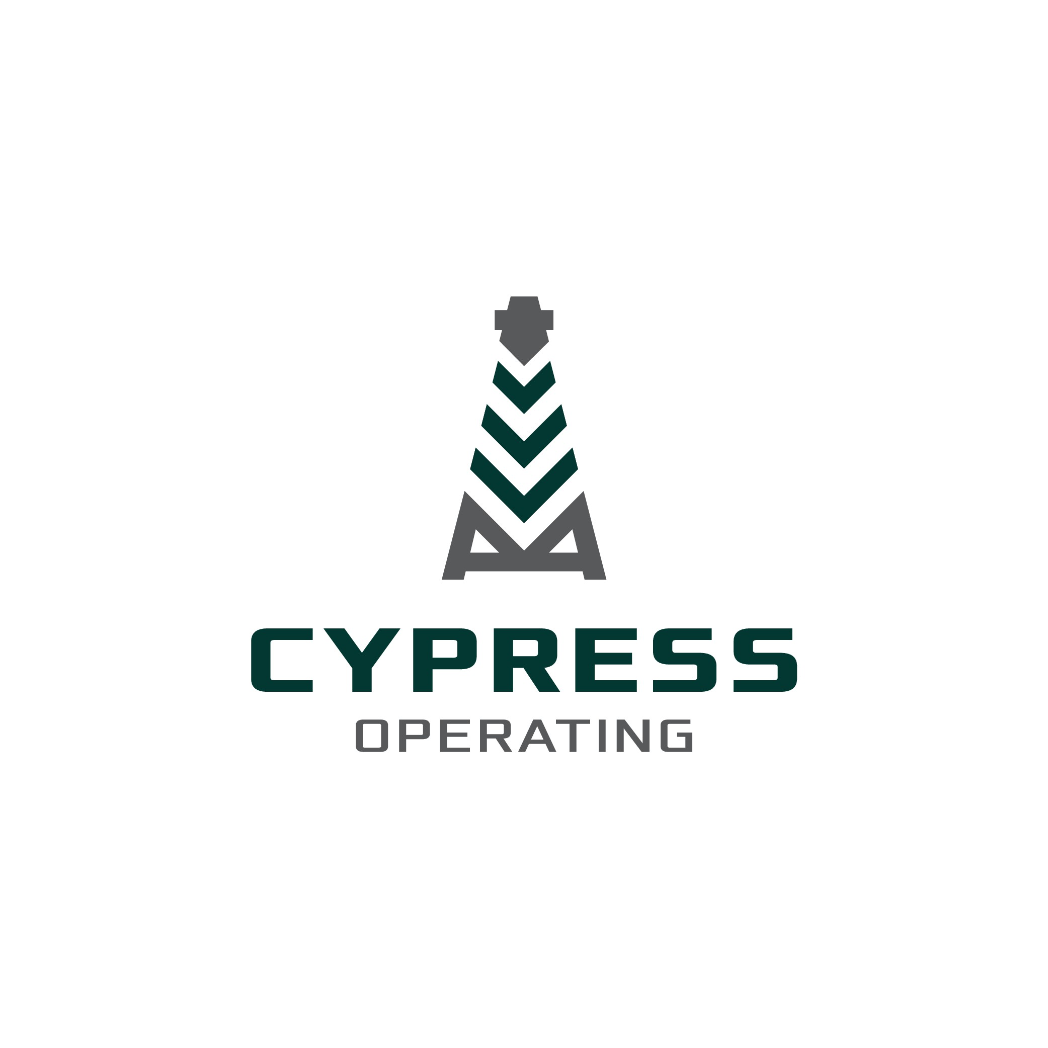 Engineering firm needs an updated logo