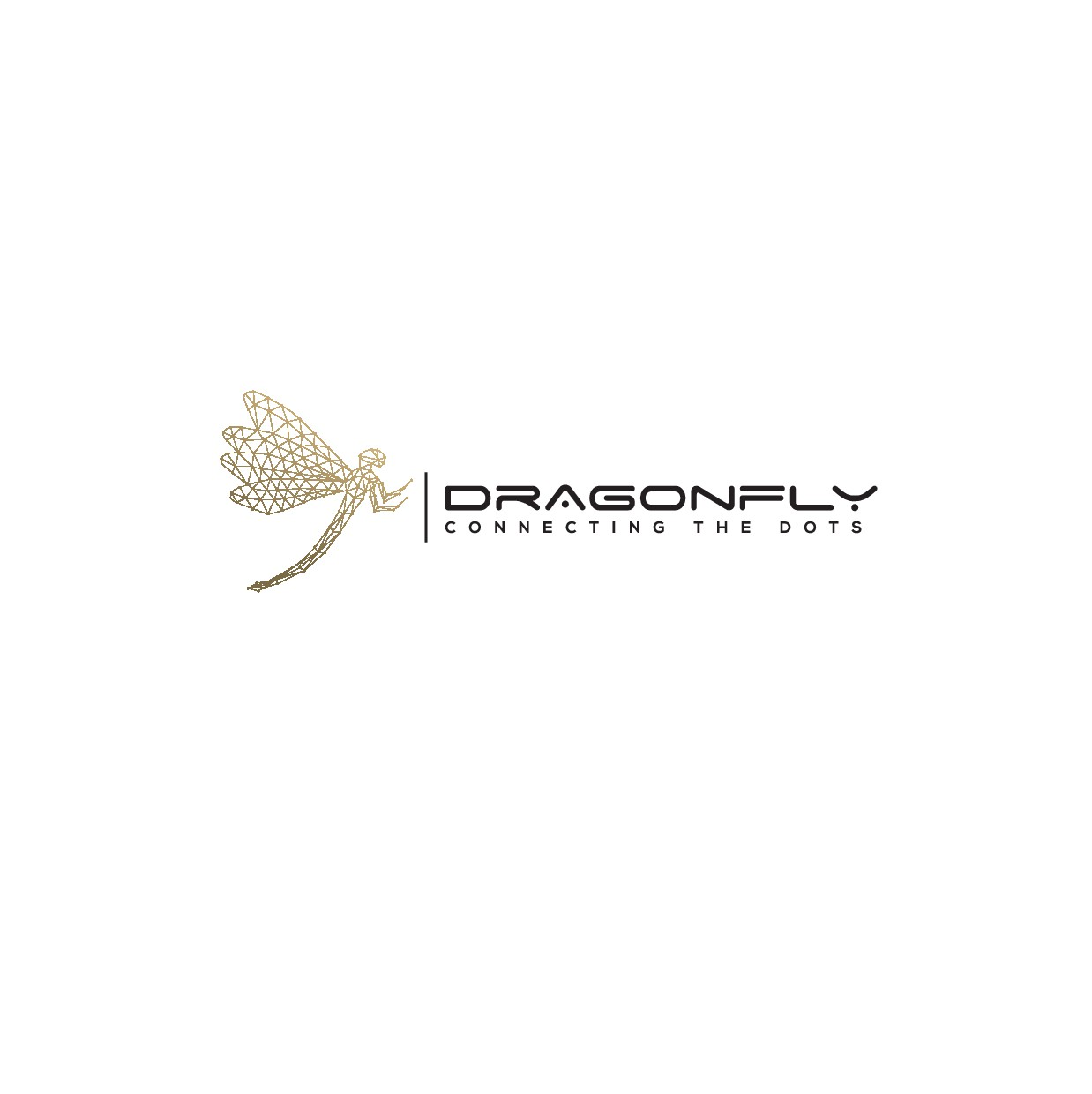 Corporate, clean, minimalist logo & card - think DRAGONFLY, with lines, connected dots & motion!