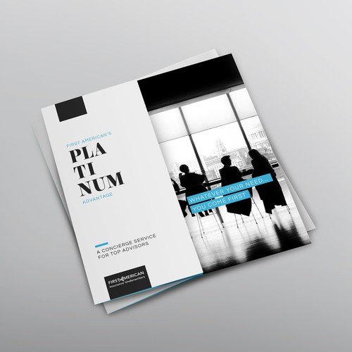 Sophisticated brochure for Platinum program