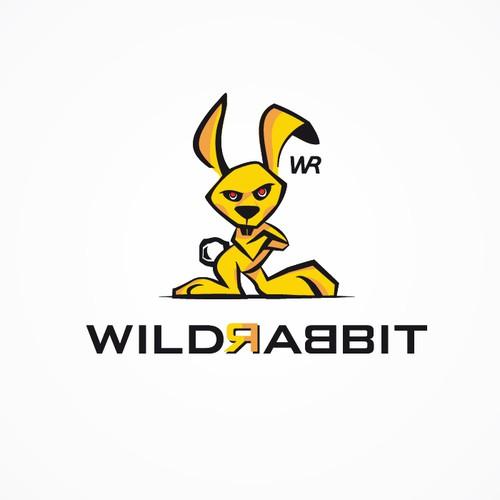 wildrabbit
