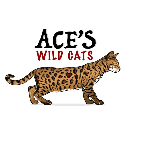 beautiful exotic looking spotted cat design to attract cat fanciers